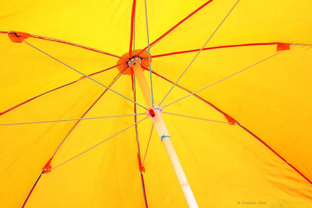 Minimalist Photo of Yellow Umbrella