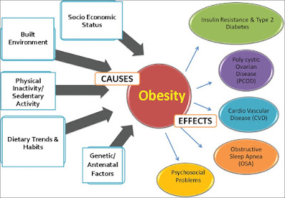 cause and effect essay obesity outline Obesity essays essay on obesity: child obesity essay the main causes of obesity are: has a negative effect on different body systems.