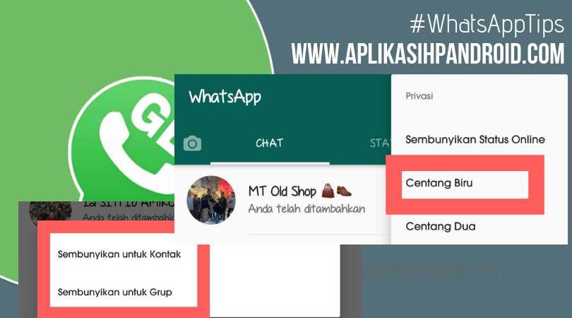 Cara Menyembunyikan centang biru pada whatsapp