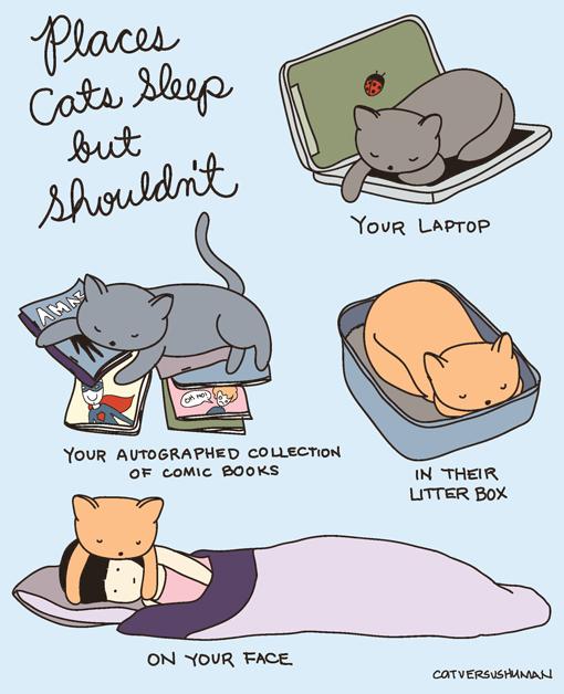 Cat Versus Human  Ilustração Para quem ama Gatos