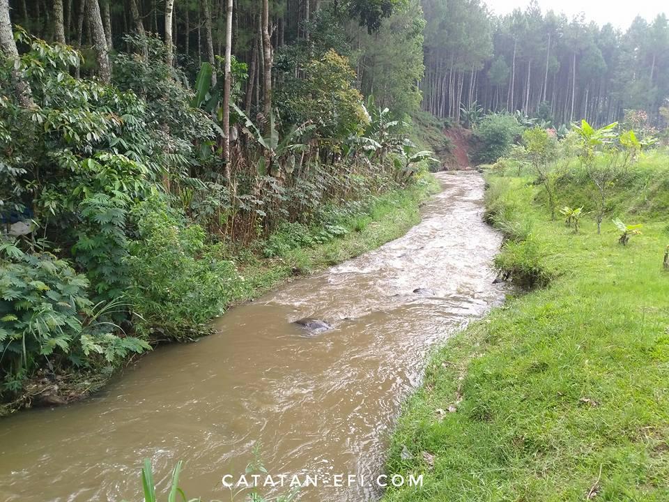 Image Result For Maen Di Sungai