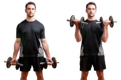 Best Dumbbell Exercises For Your Biceps
