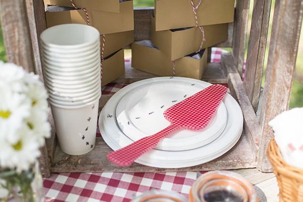 La chica de la casa de caramelo el segundo cumplea os de - Platos para picnic ...