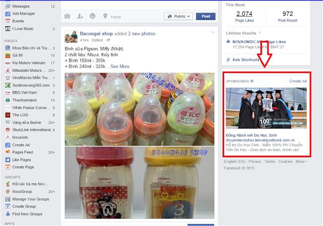 Hình thức quảng cáo Facebook Standard Ads