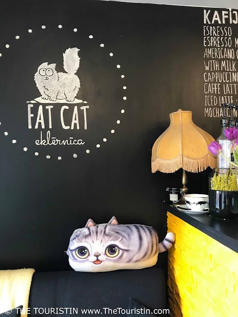 fat cat riga latvia the touristin cafe cat cushion