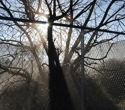fog fence story