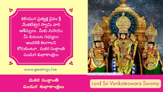 Lord Sri Venkateswara Swamy Sankranti festival Wishes in Telugu HD Images
