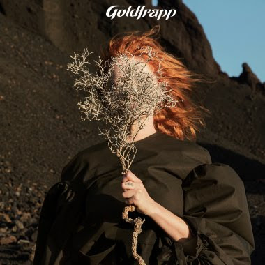 lacn goldfrapp silver eye