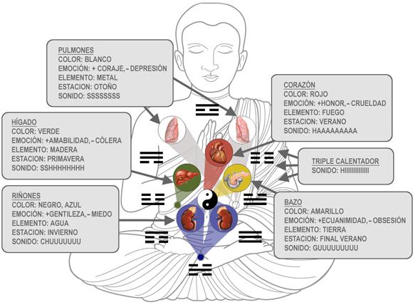 Resultado de imagen para los seis sonidos sanadores