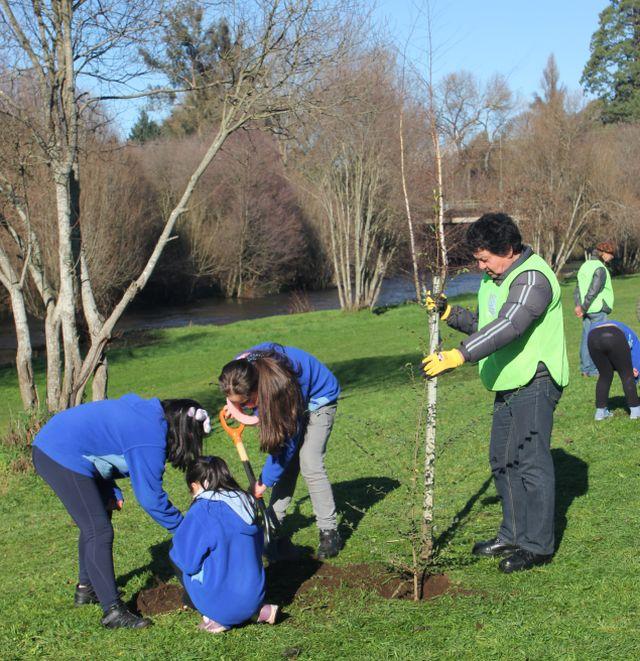Día del árbol en el Parque Chuyaca