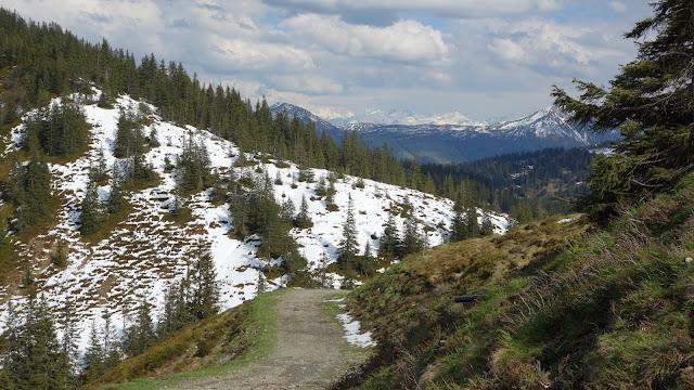 Bikeurlaub Kitzbüheler Alpen