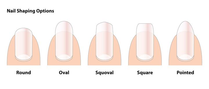 Nail Shapes At The Consultation Stage It Is Also Important To Consider Shape That Would Most Suit Your Client Discuss This With