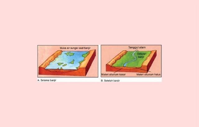 Dataran Banjir Sedimentasi