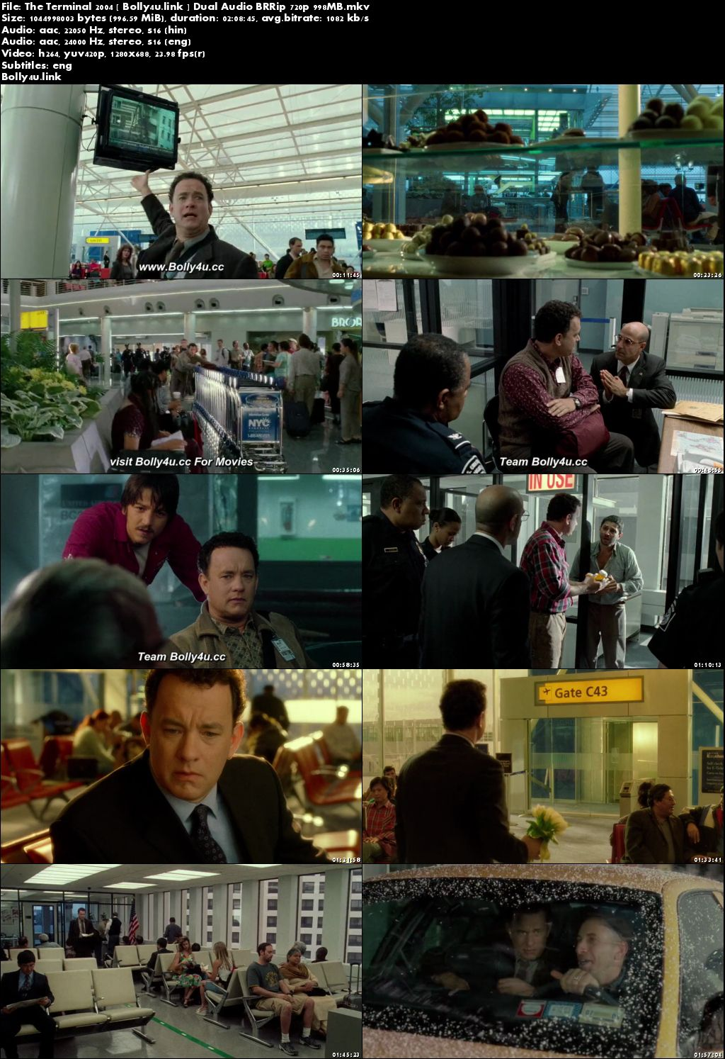 The Terminal 2004 BRRip 400MB Hindi Dual Audio 480p Download