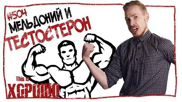This is Хорошо - Мельдоний и тестостерон. #504