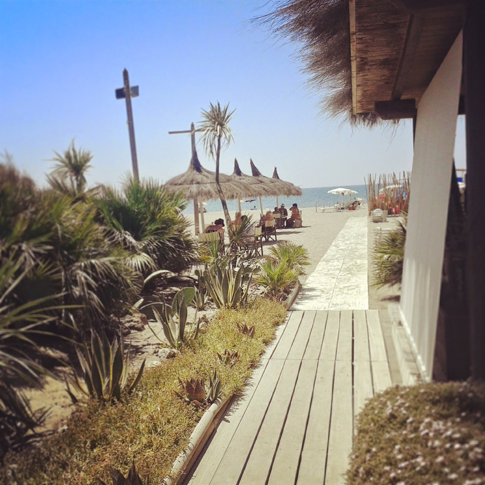 View of palms and tables on the beach at restaurant Fiumara