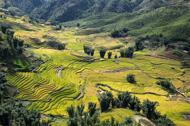What are the most attractive tours in Sapa? 7