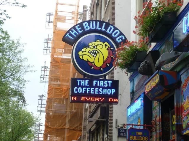 The Bulldog, o primeiro e mais famoso Coffeshop de Amsterdã - Holanda