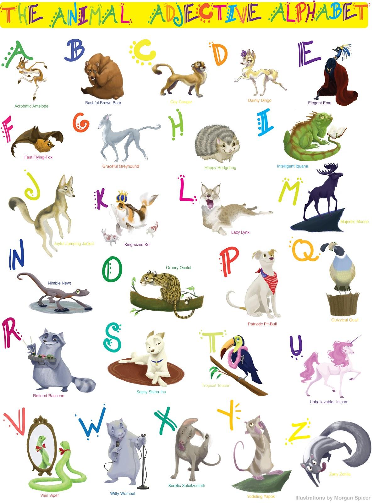 Morgan Spicer Illustration The Animal Adjective Alphabet
