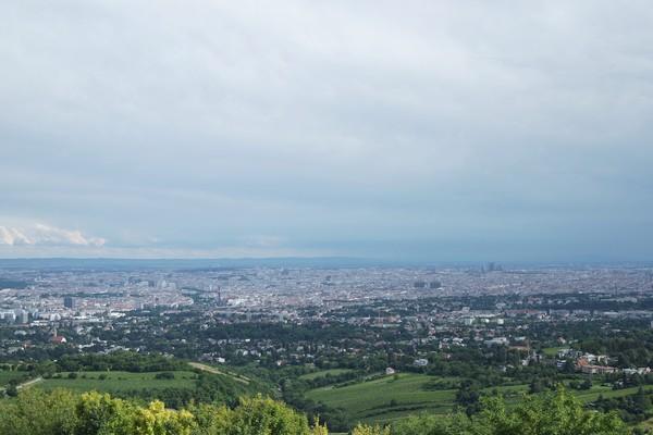 vienne vienna panorama döbling kahlenberg vignes 19 arrondissement