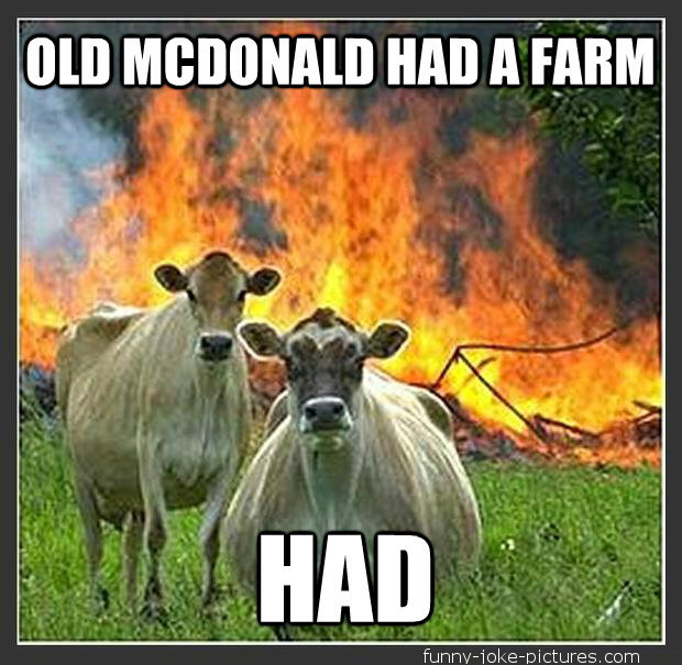 Funny Old McDonald Had a Farm Cows Photo Meme