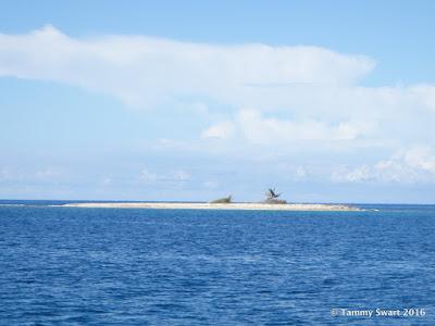 Big Island Itinerary Reddit
