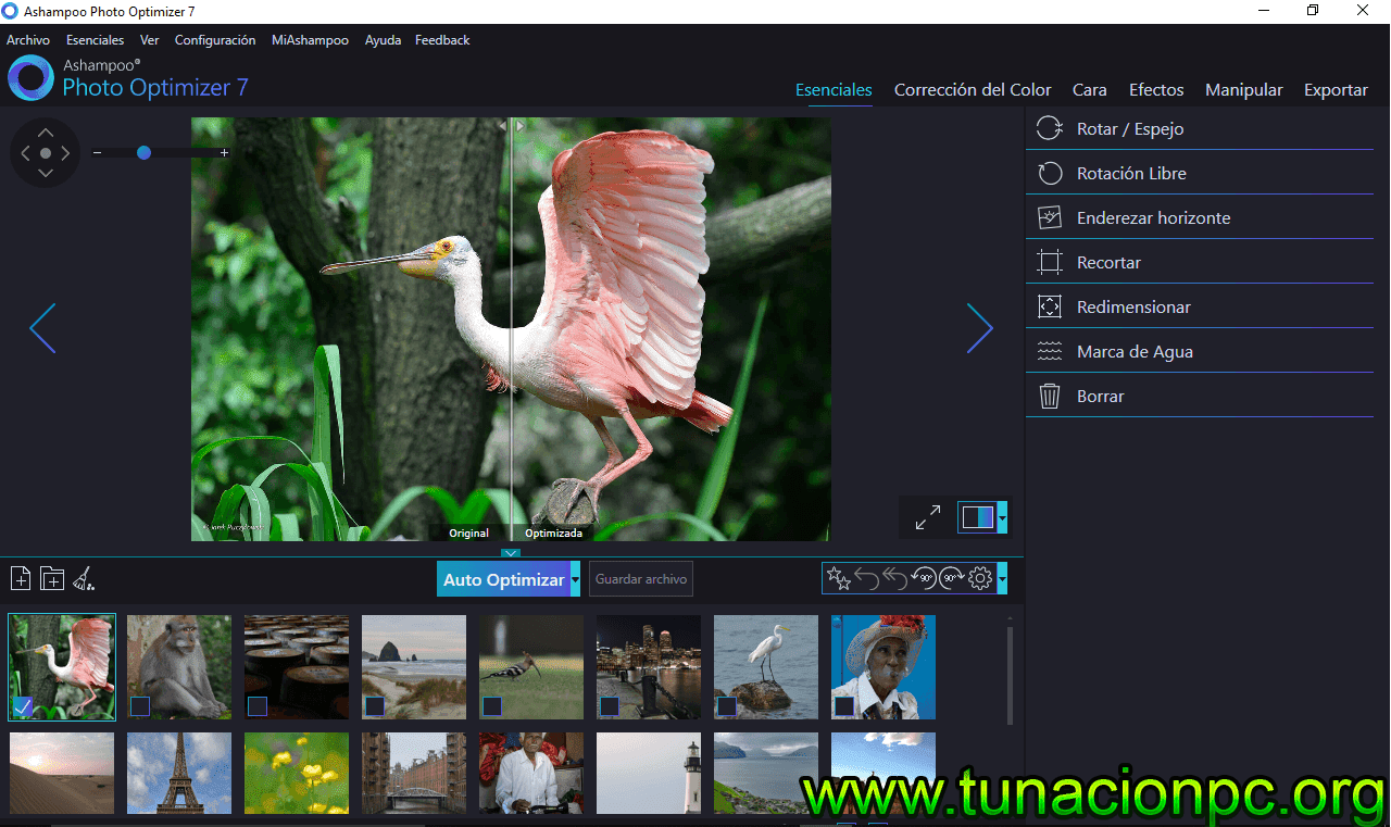 Descargar Ashampoo Photo Optimizer