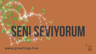 I love you in Turkish Language seni seviyorum.jpg