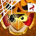 Angry Birds Epic RPG v2.6.27052.4623 Mod Apk+Obb