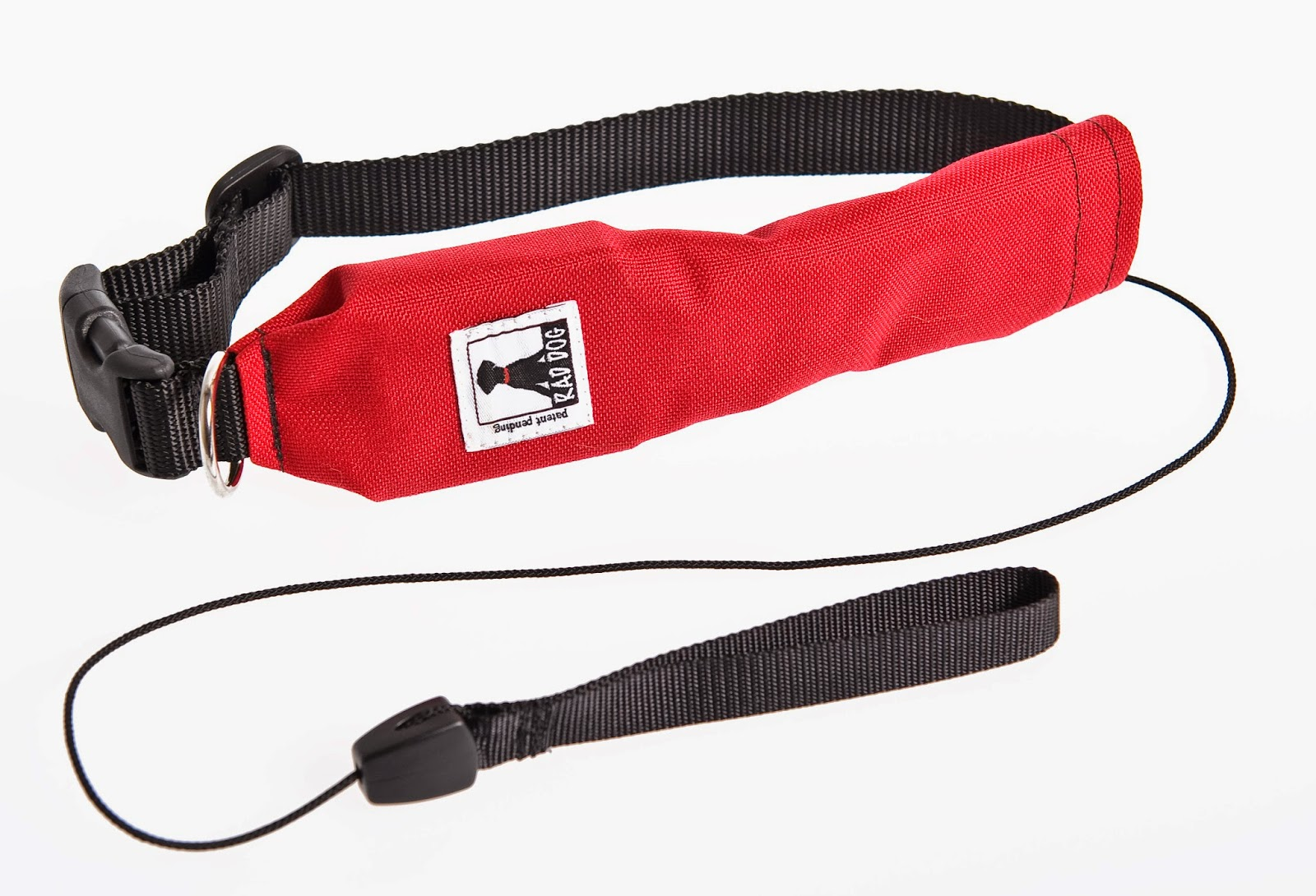 leash collar in one