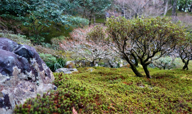 Lumut di Ginkakuji Temple
