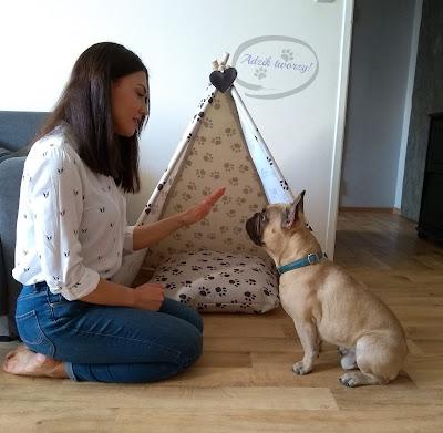 diy instrukcje szycie dla zwierząt tipi
