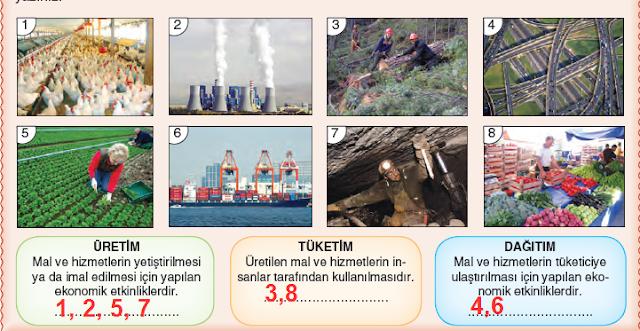 11.Sınıf Dikey Yayınları Coğrafya Ders Kitabı 63.Sayfa Cevapları Ekonomik Faaliyetler ve Doğal Kaynaklar