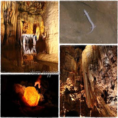 jama baredine grotte croazia istria