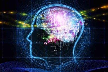 Mengenali Otak Manusia, Bagian-bagian serta Fungsinya