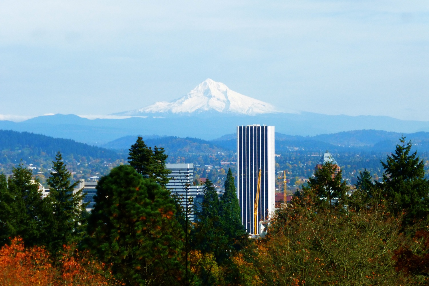 Mount Hood as seen from Portland Japanese Garden