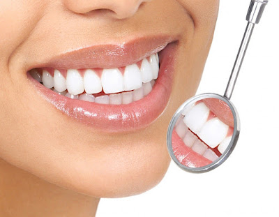importance Osteoporosis Therapy in Fighting Gum Disease