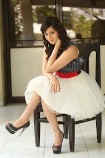 Actress Harshika  Pictures at Appudu Ala Ippudu Ila Press Meet  0020.jpg