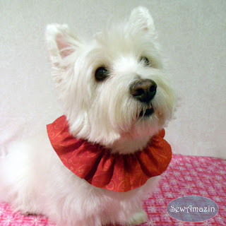 Valentine Dog Scrunchie Neck Ruffle, Red and Gold Hearts