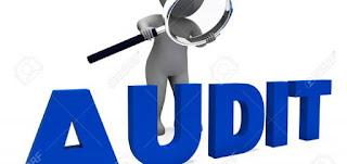 Bimtek Standar Audit Kinerja