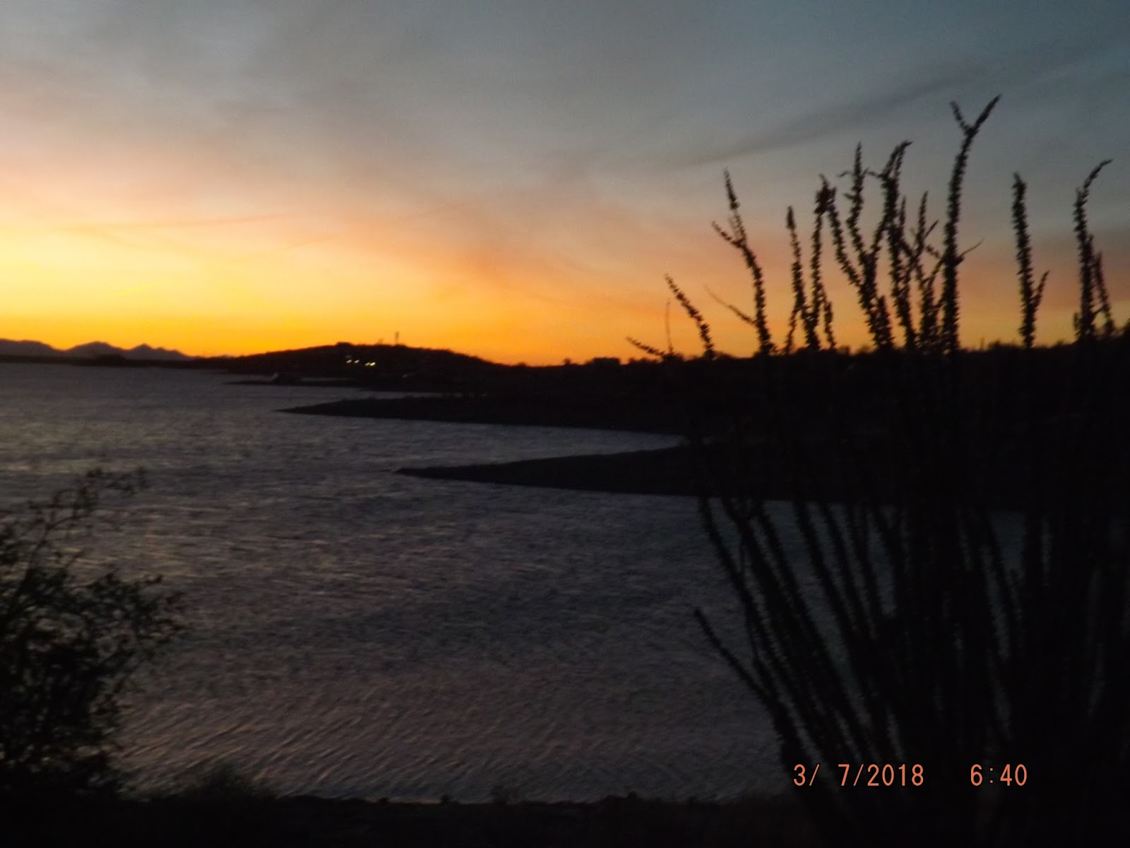 the hook up lake pleasant Went up to lake pleasant in arizona when the water line was dropping snorkeled and filmed some big fish with a gopro and its underwater dive housing attache.