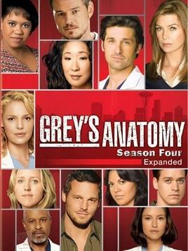 Baixar Grey's Anatomy 4ª Temporada Dublado