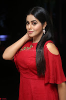 Poorna in Maroon Dress at Rakshasi movie Press meet Cute Pics ~  Exclusive 77.JPG