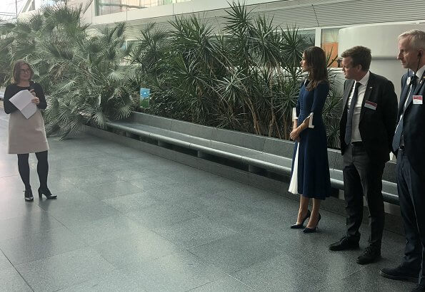 Crown Princess visited the Georges Pompidou European Hospital in Paris