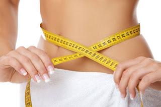 Menu Diet Untuk Menurunkan Berat Badan