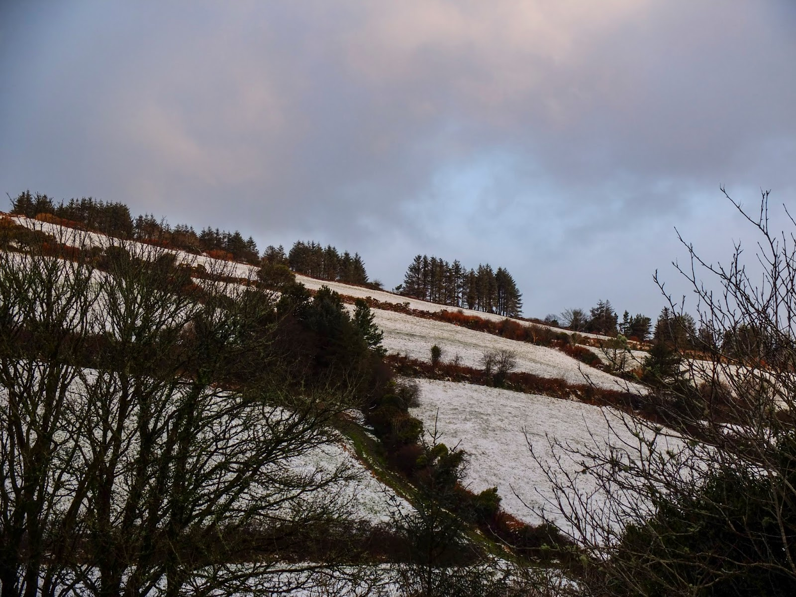 Fields on a hillside in North Cork covered with snow.