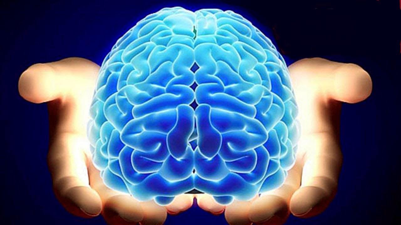 23 hábitos diarios que te harán más inteligente