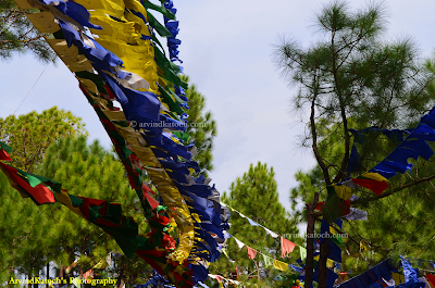 Tibetan Flags, Himachal, Chanting flags