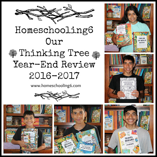 Fun-Schooling with Thinking Tree: 2016-2017 School Year