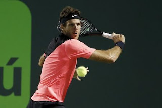 Del Potro grinds down Raonic in Miami